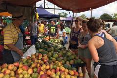 UW-La Crosse women's soccer trip - Farmers Market 2