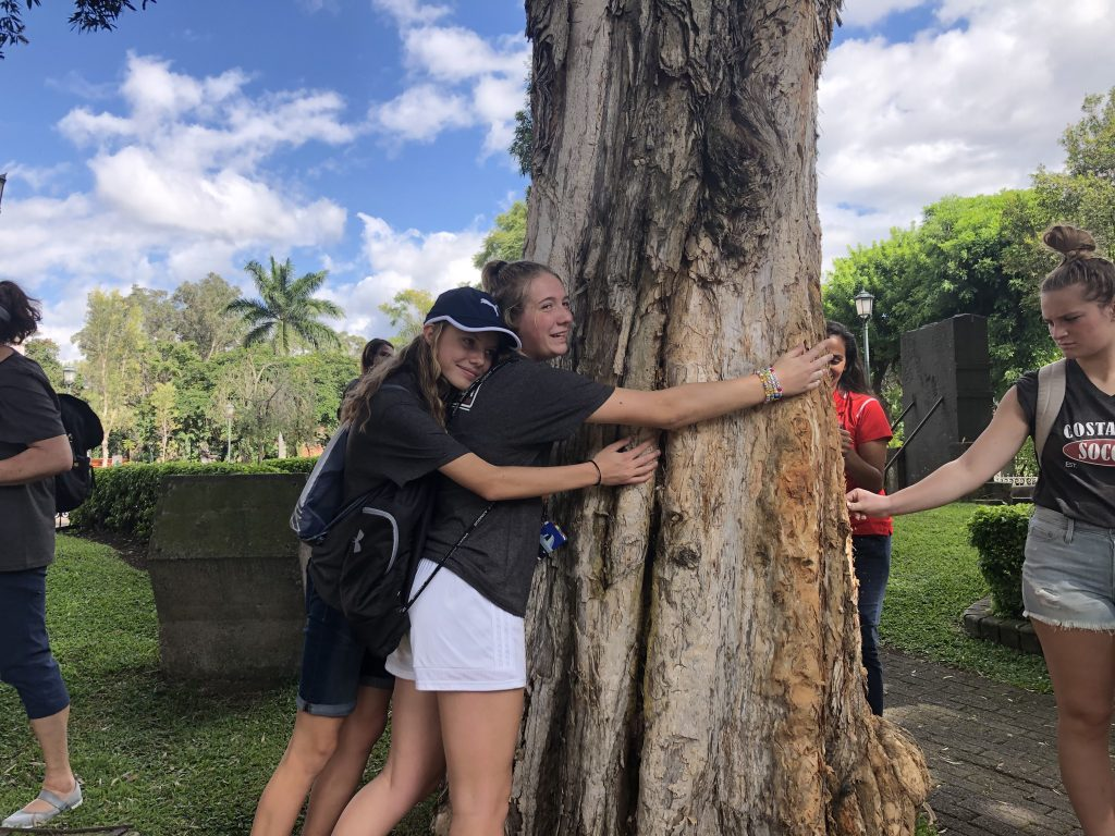 Arsenal FC Premier Girls hugging a tree